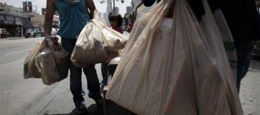 Plastic Bag Insanity