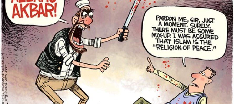 Louvre Attack (Cartoon)