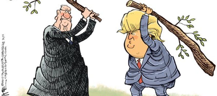 Trump Branches of Govt (Cartoon)