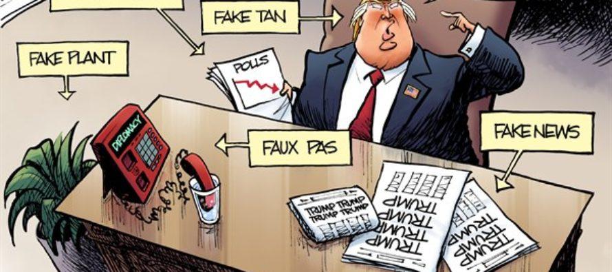 Fake Cartoon (Cartoon)