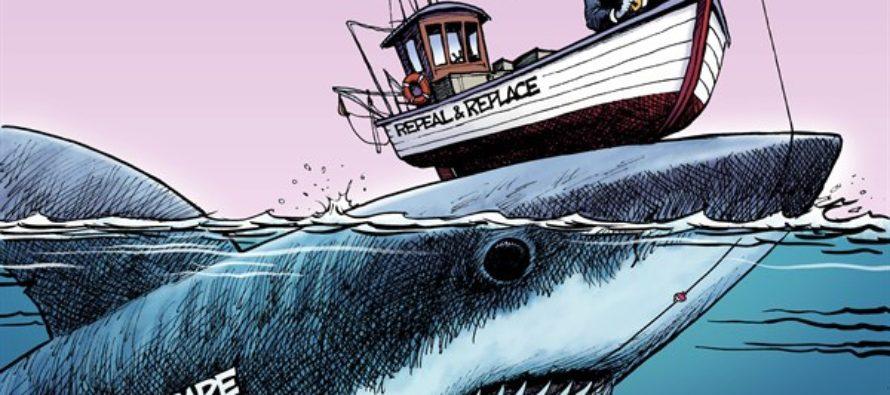 Obamacare Angling (Cartoon)