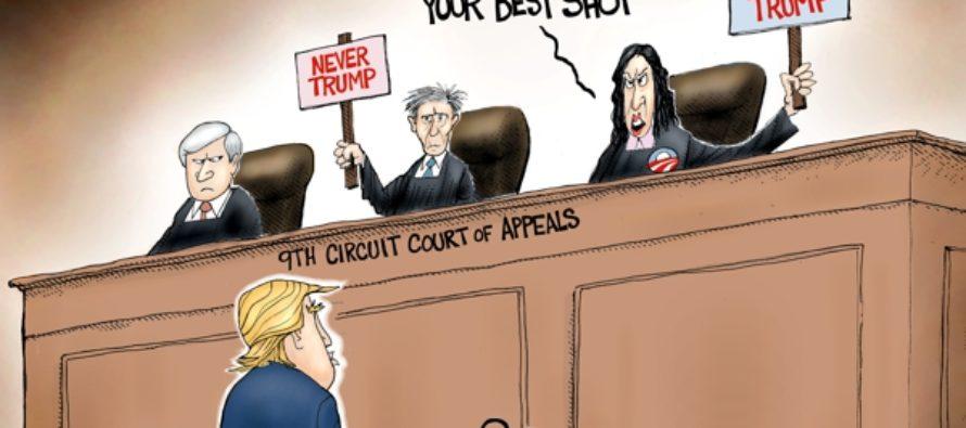 The Nutty 9th (Cartoon)