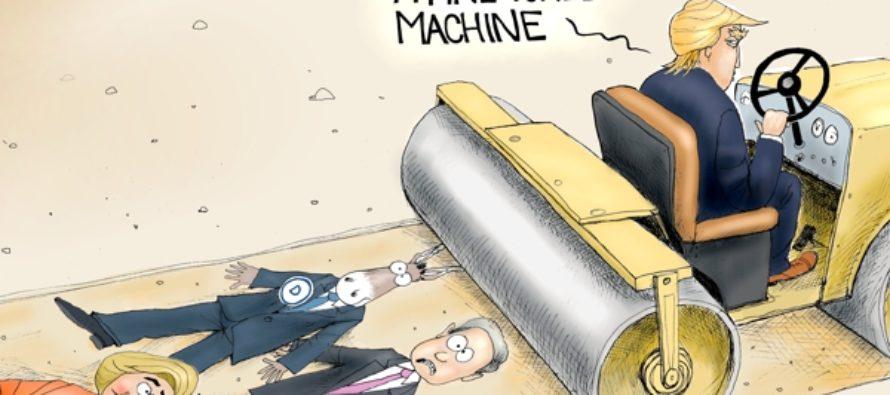 What Chaos? (Cartoon)