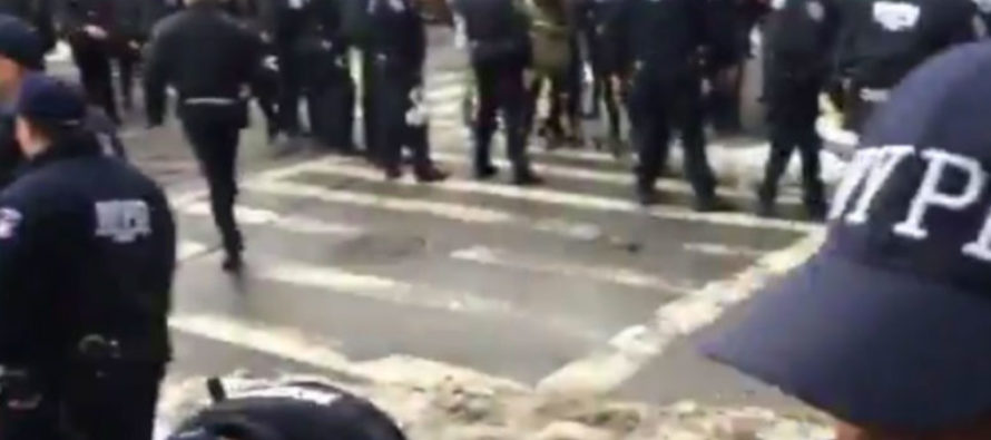 NYPD Drops The Hammer On Illegal Immigration Protesters Blocking Street [VIDEO]