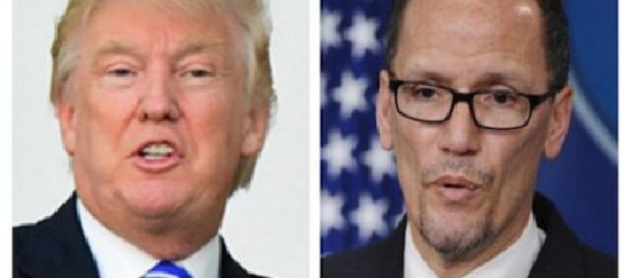 Trump vs DNC Chair – the battle of the Tweets