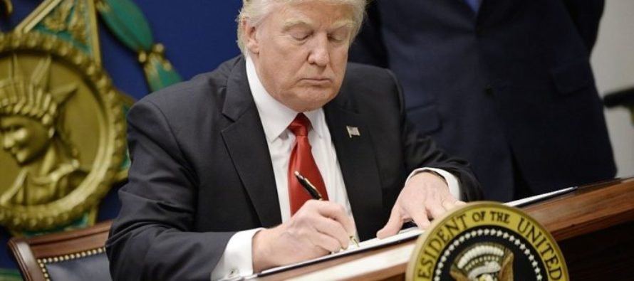 MIND BLOWING Poll Shows What Americans Really Think About Trump's Immigration Ban