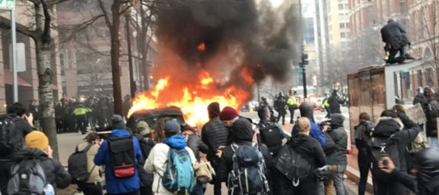 BOOM: Hundreds of Anti-Trump Rioters Just Got BAD NEWS! [VIDEO]