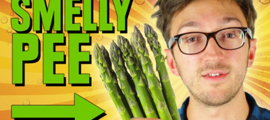 Big Government Wastes Our Money Paying People to Eat Asparagus and Then Sniff Their Pee