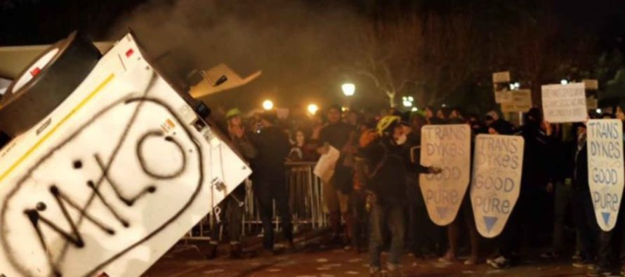 Trump SHUTS DOWN Campus Thugs Defending Berkeley Riot with ONE THREAT That's Got Them Shaking!