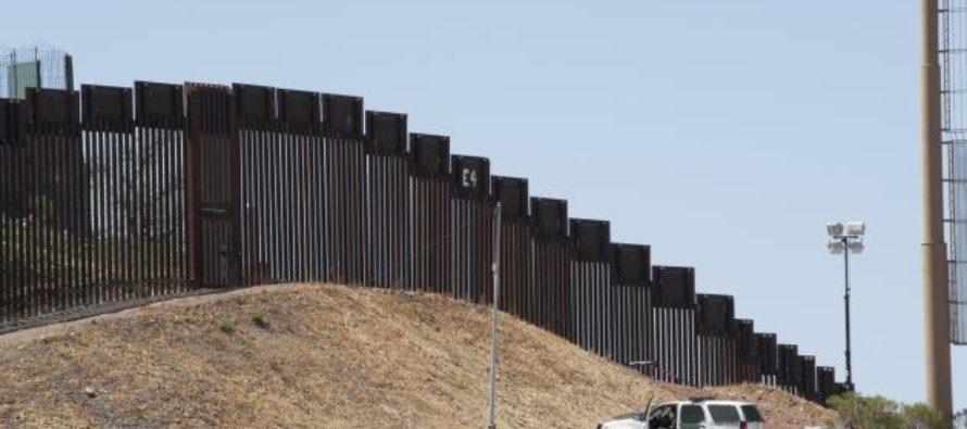 """Experts"" Warn Border Wall Will Harm 800 Species"