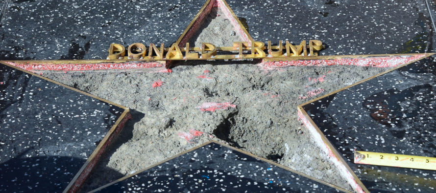 Liberal Who Smashed Trump's Hollywood Star With a Sledgehammer is Convicted of a Felony