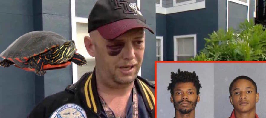 These LOSERS Get What They Deserve After Abusing Turtle & Attacking DISABLED Veteran