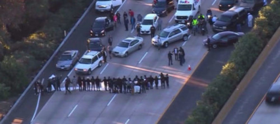LOL! Protesters VS Cars – Guess Who Won? VIDEO