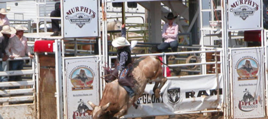 The Circus Dead, Animal Rights Kooks Target Rodeo
