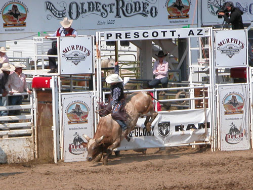 prescott-rodeo