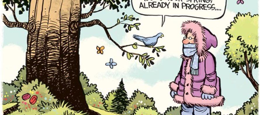 Return of Spring (Cartoon)
