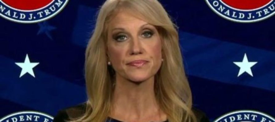 Whoa! Kellyanne Conway Says She'd Rather Slit Her Own Wrists Than Do This [VIDEO]