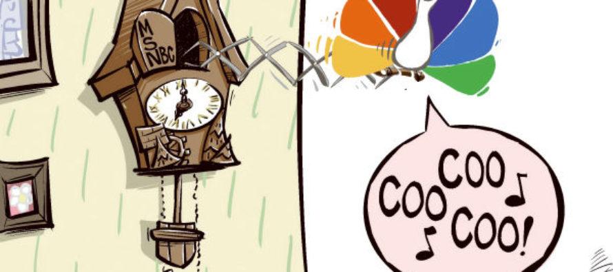 MSNBC Cuckoo (Cartoon)