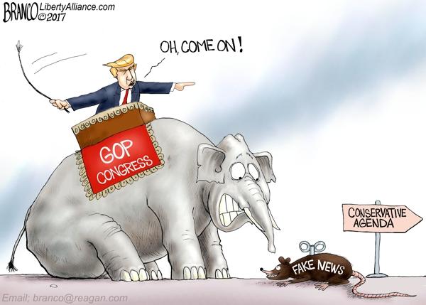 GOP-obst-600-LA