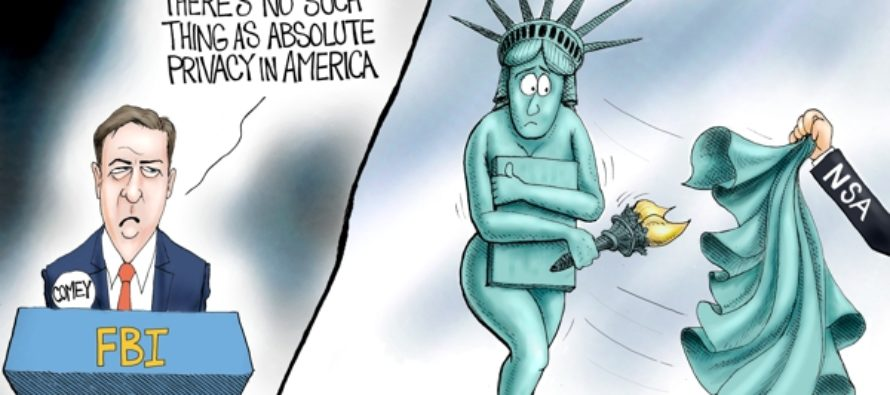 Exposed (Cartoon)