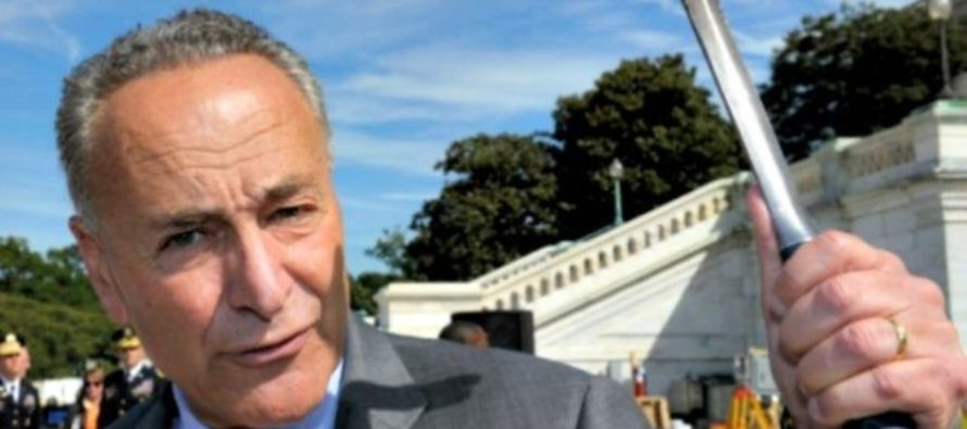 Chuck Schumer: We're going to block Trump's border wall & there's nothing you can do about it