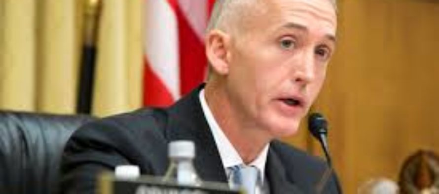 Gowdy CRUSHES Media On Wiretapping Investigation Like A BOSS [WATCH]