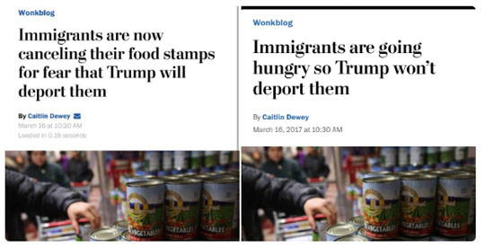 food-stamps_illegal-aliens