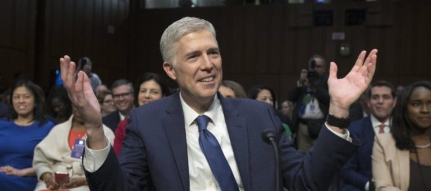 SHOCKING! Democrats Backing Down On Gorsuch – Talking Confirmation, BUT…