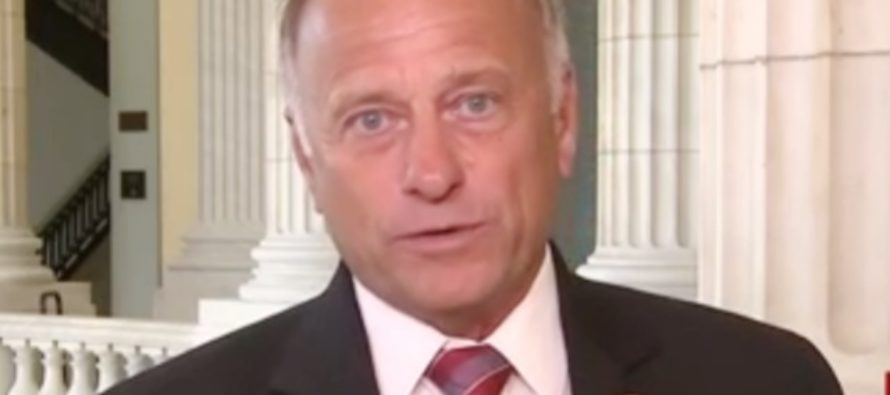 Republican Rep. Steve King: Trump 'Needs to Purge Leftists from Executive Branch' Over Leaks