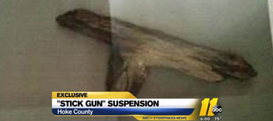 5-Year-Old Girl Suspended Over Stick Gun
