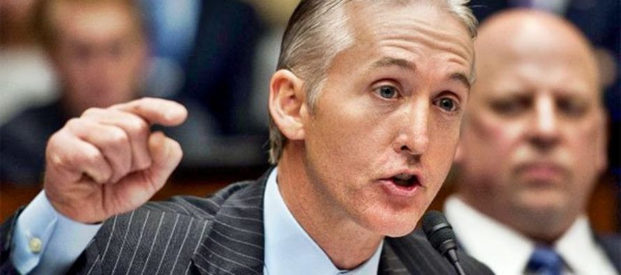 Trey Gowdy Drops NUCLEAR BOMB About Trump Scandal [VIDEO]