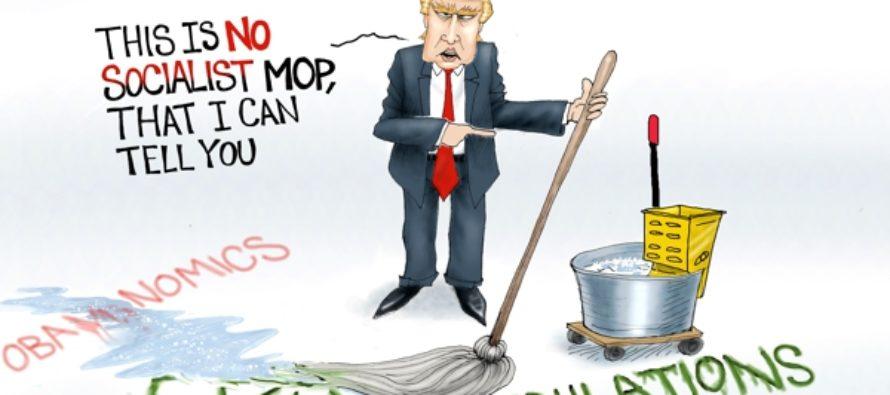Cleanup On Aisle America (Cartoon)