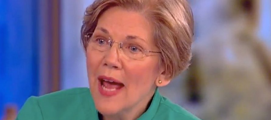 Elizabeth Warren Chats With Hosts Of 'THE VIEW' – They Go Full On RAGE MODE Over Trump [WATCH]