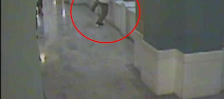 VIDEO: After Raping 10 Year-Old & Murdering Her & Her Grandparents, Criminal Jumps To His Death