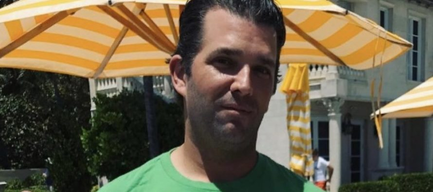 Trump Jr. ROASTS Liberal Media Hardcore, Rosie O'Donnell 'TRIGGERS' Then This Happens…