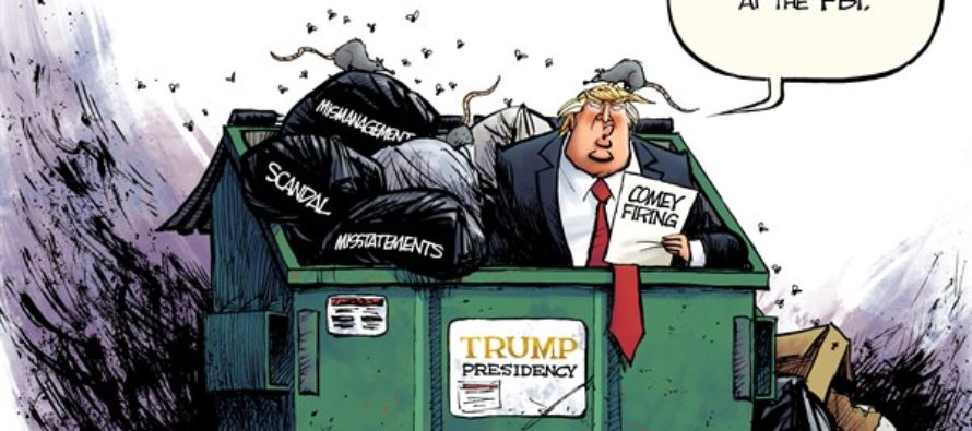 Comey Firing (Cartoon)
