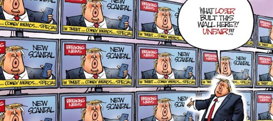 Wall to Wall Trump (Cartoon)