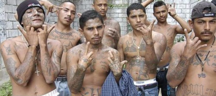 Brown's New Budget To Include Millions To Defend Illegal Aliens From Deportation