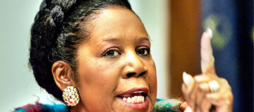 Rep. Sheila Jackson Lee's Campaign Used Nearly $10K For This…