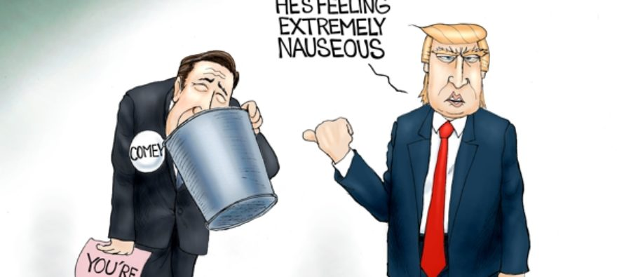Comey's Out (Cartoon)
