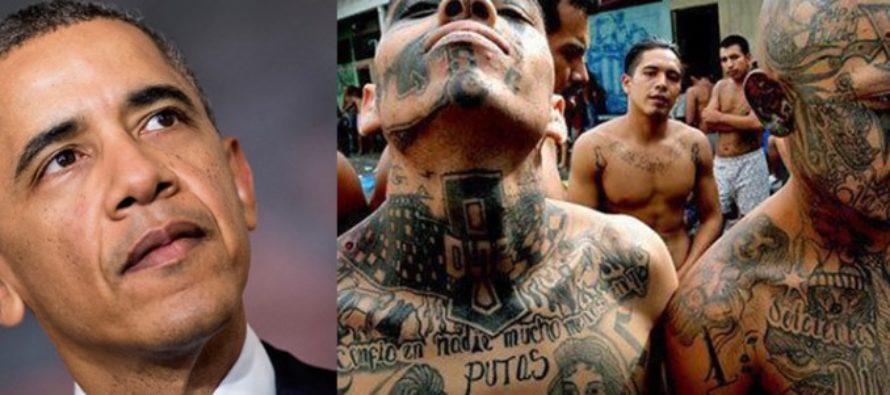 REVEALED: Whistleblower Proves Obama Kept DANGEROUS Immigration Secret From Taxpayers [VIDEO]