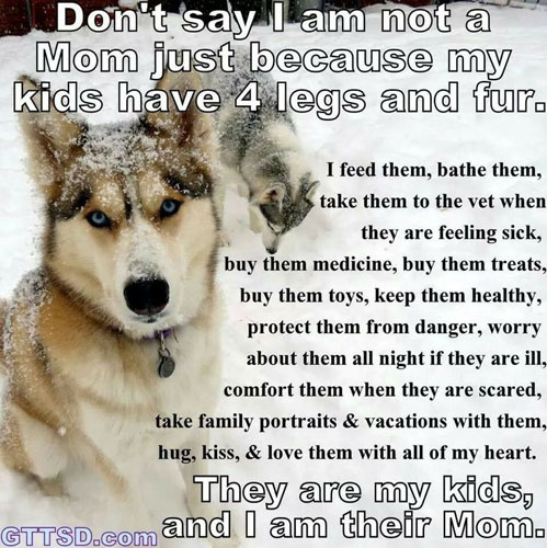 dogs-as-kids