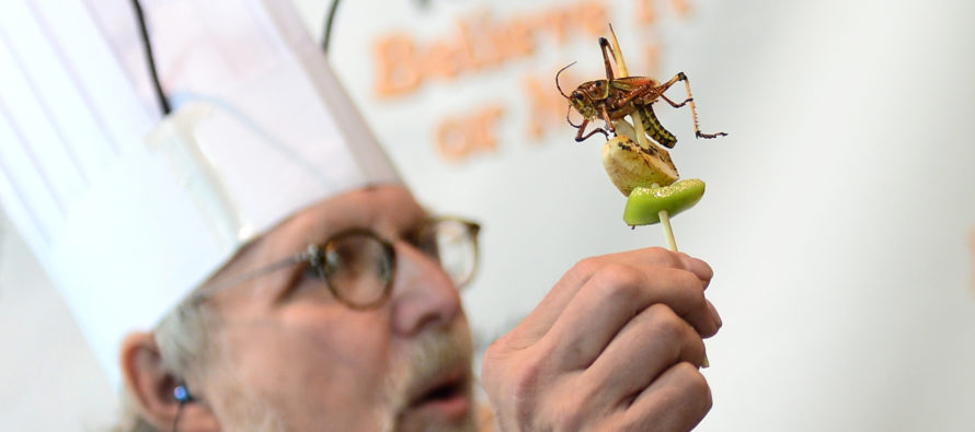 Climate Change MANIACS: Eat BUGS To Save The CLIMATE!!