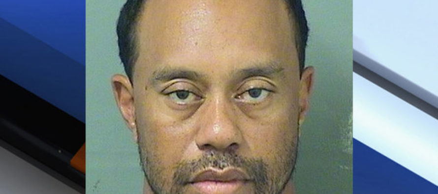 Tiger Woods Arrested – Fans Shocked at Reason Why…