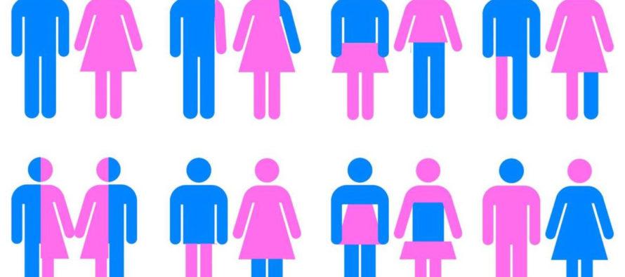 Transgender Activist: Gay Men are Failed Women