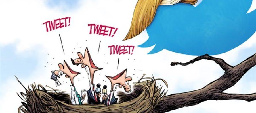 Tweety Birds (Cartoon)