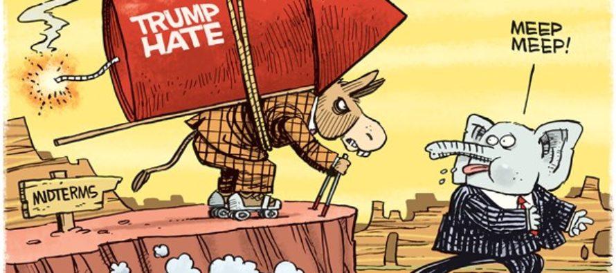 Wile E Donkey (Cartoon)