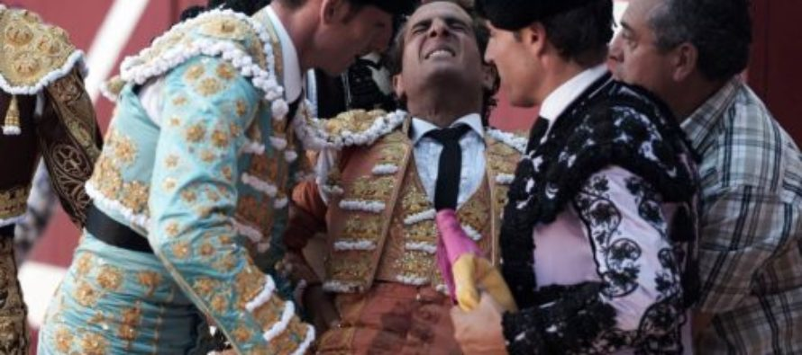 THIS Award-winning Matador, Ivan Fandino, Horrifically Gored To Death By Bull In Arena