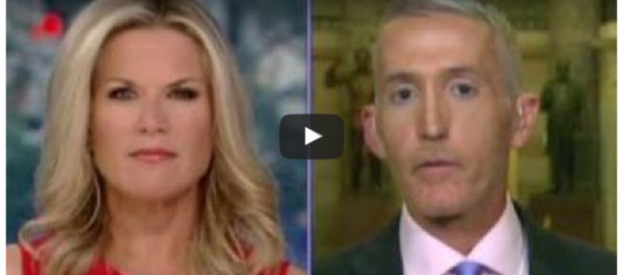 TREY GOWDY: Maybe DNC Didn't Cooperate With DHS Because There Was Something Else On That Server [VIDEO]