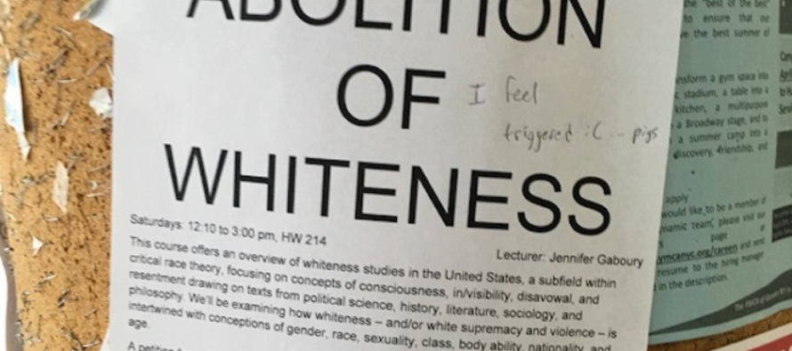 'Abolition Of Whiteness' Course Fulfills a Political Science Requirement at College